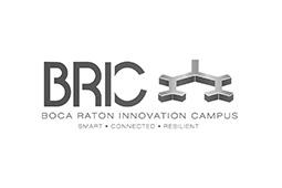 logo-bric