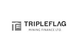 logo-tripleflag
